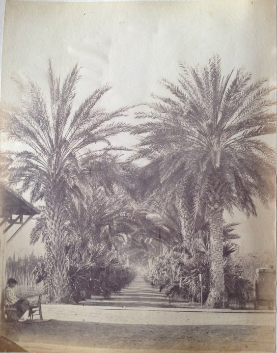 Casper Baker. Early photographs of the Royal Navy, Algiers, Seville and Gibraltar